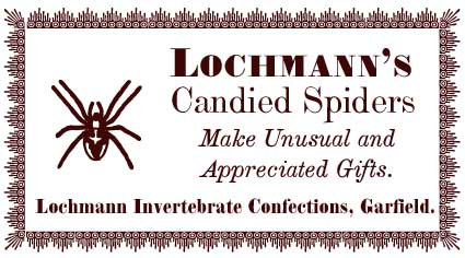 lochmann.jpg